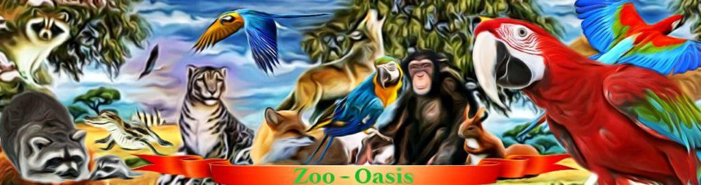 купить в питомнике Зоо-Оазис