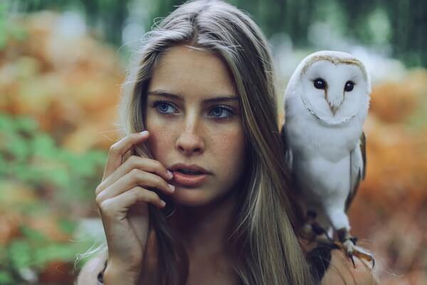 К чему снится сова женщине