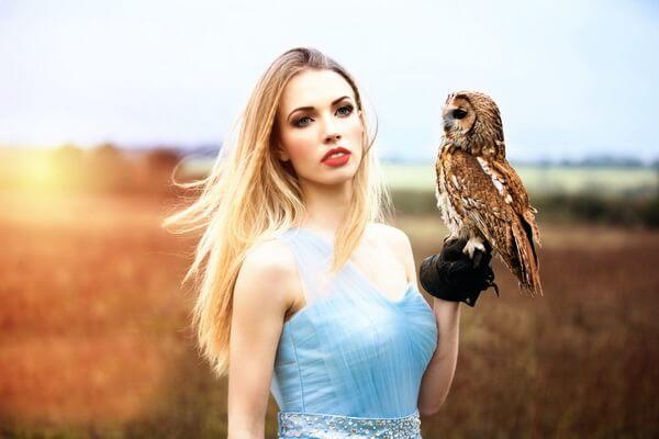 К чему снится держать сову в руке