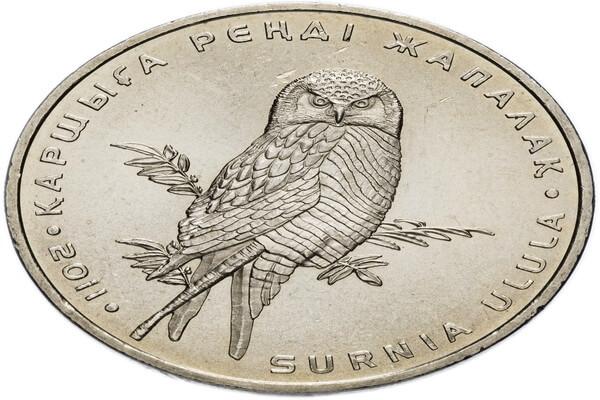 Монета с изображением ястребиной совы
