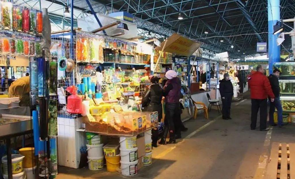 Птичий рынок на Московской улице