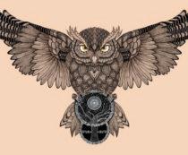 Что символизирует сова - основные значения