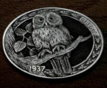 Совы на монетах