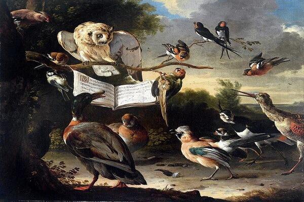 Совы в живописи - Мельхиор де Хондекутер «Птичий концерт»
