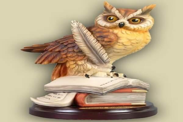Почему сову считают мудрой птицей и символом мудрости - основные версии